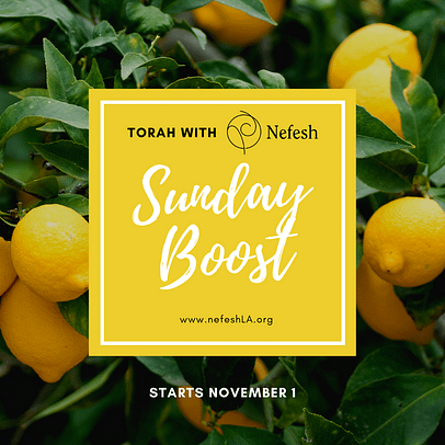 Nefesh Boost - Sundays in 5781