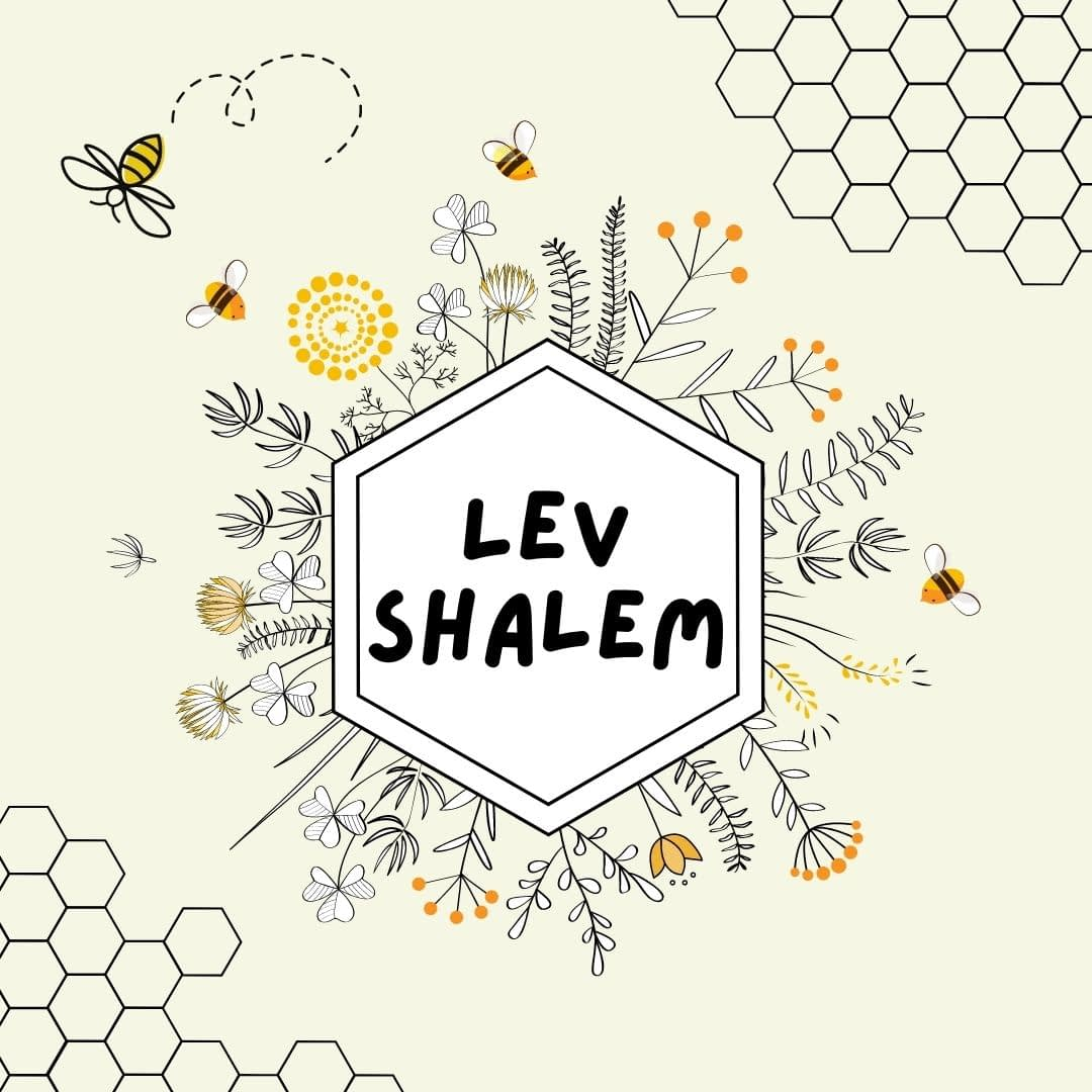 Lev Shalom: Whole-Hearted, a Nefesh community support space for social justice work