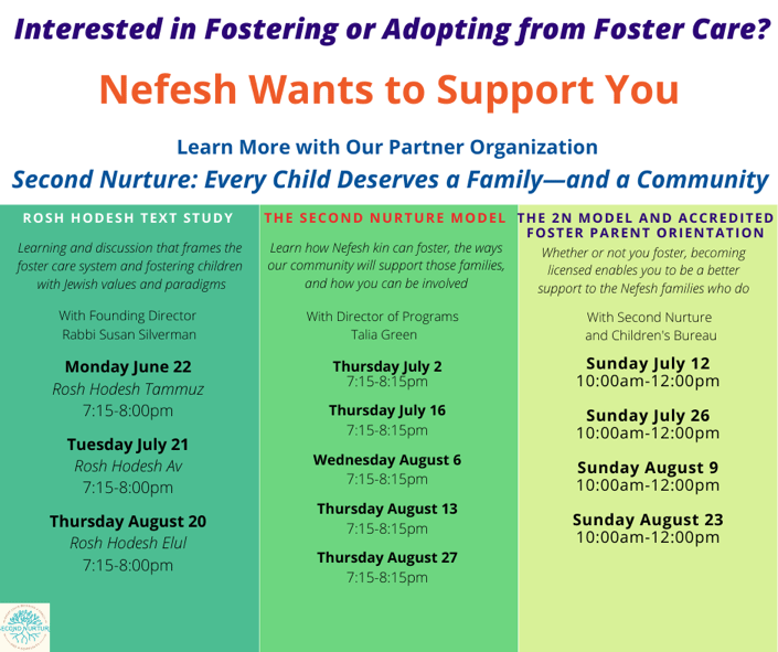 Interested in Fostering or Adopting from Foster Care?